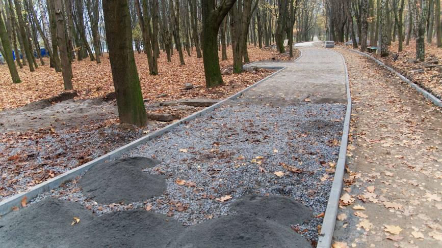 У парку Дружби народів з'явиться 450 метрова алея, урни та камери