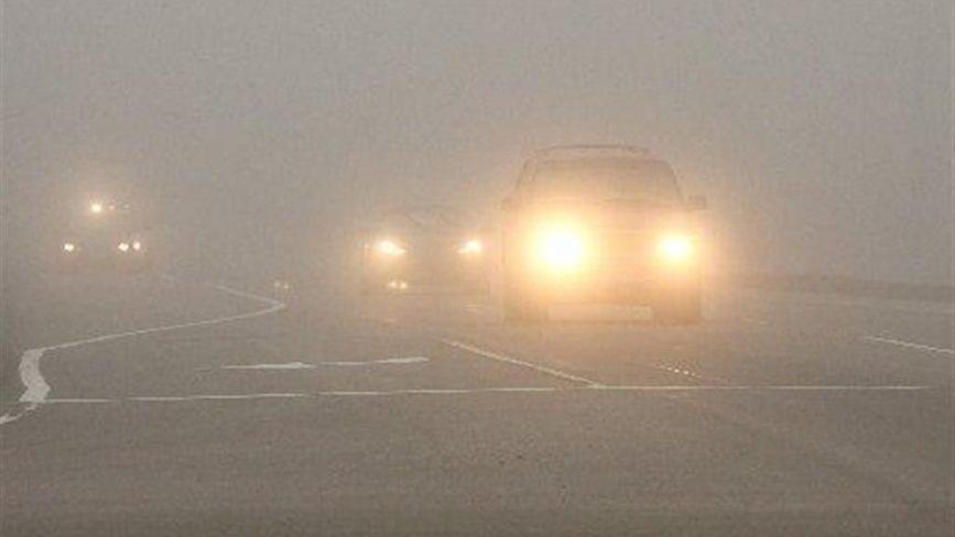 Погода у Вінниці на 10 листопада. Синоптики попередили про погану видимість