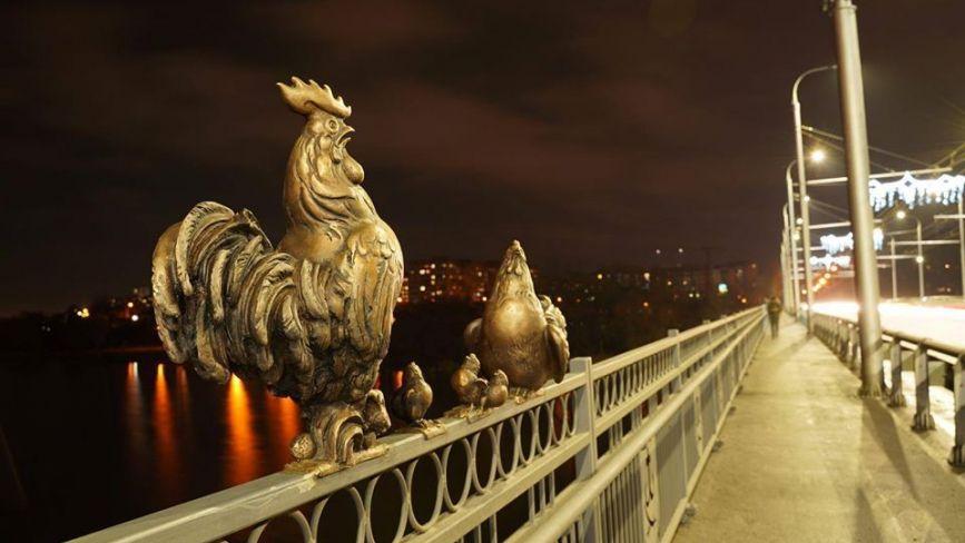 На Київському мосту знову поповнення: до пташиної родини приєдналися курчата