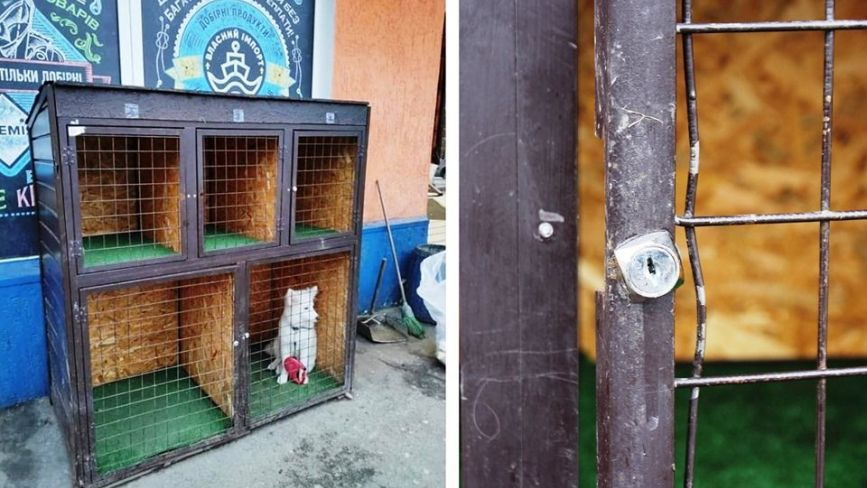 «Парковка» для собак біля «Сільпо». Ламають замки, бо садити тварину за грати не гуманно?