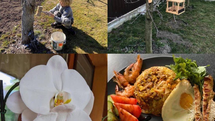 Домашні фотографії: чим займаються відомі вінничани у вимушеній відпустці