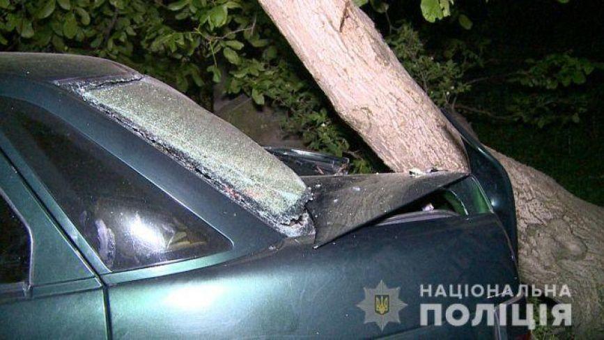 Наїзд на дітей у Калинівському районі: стали відомі нові деталі аварії
