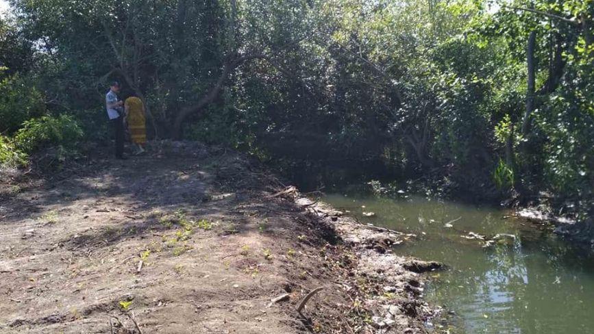 «Вона ніколи приємно не пахла» або хто знову забруднив річку Тяжилівку?