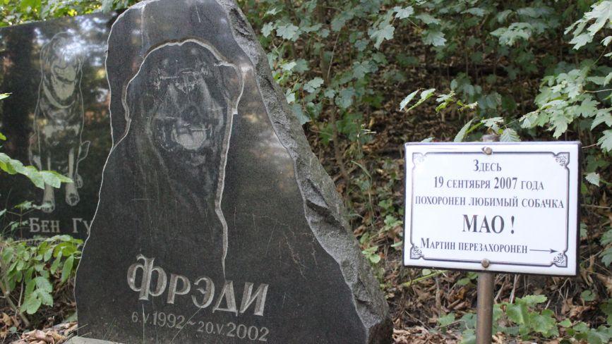 Як виглядає вінницьке кладовище домашніх тварин. І чи можливо легально поховати улюбленця?