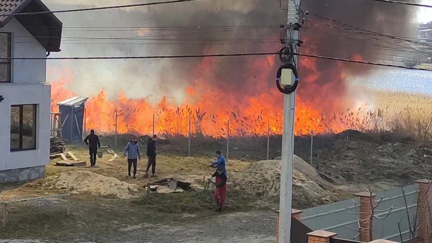 «Будинки в одному метрі від вогнища». На Вишеньці палала суха трава