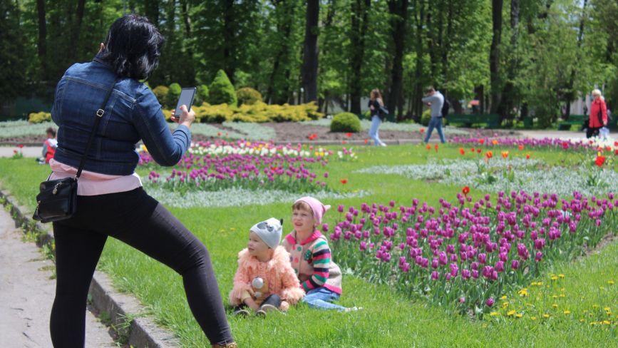 Тисячі тюльпанів, атракціони та батути. Як вінничани відпочивають у Центральному парку
