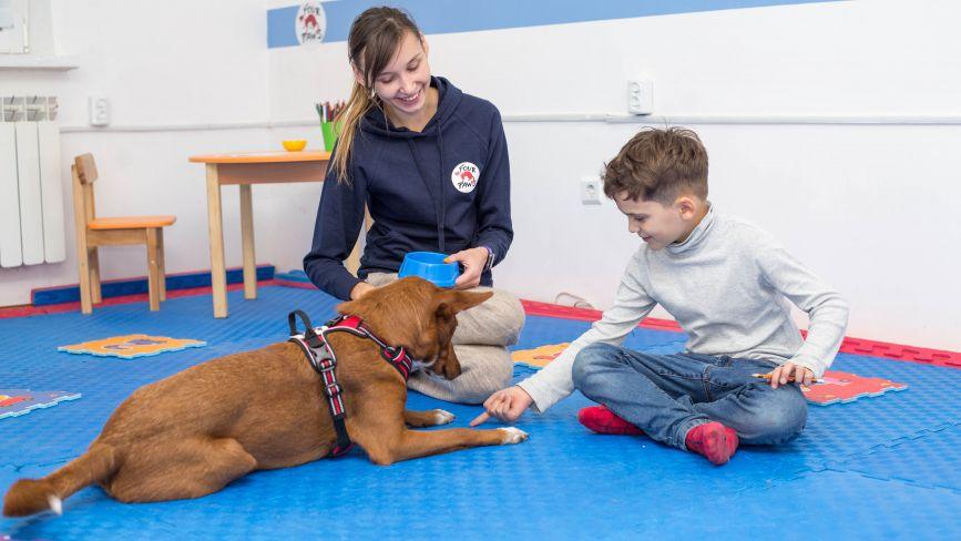 Ліса і Буся — собаки, які допомагають людям. Про каністерапію та її застосування у Вінниці