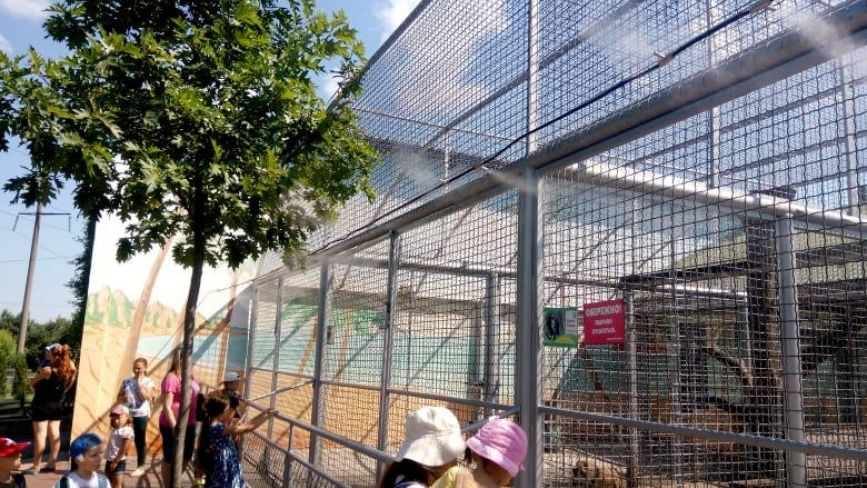 Комфорт у спеку. У Подільському зоопарку встановили туманоутворювач