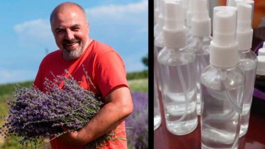 Пробну партію лавандової олії виготовили в Ладижині. Пропонують вирощувати лаванду
