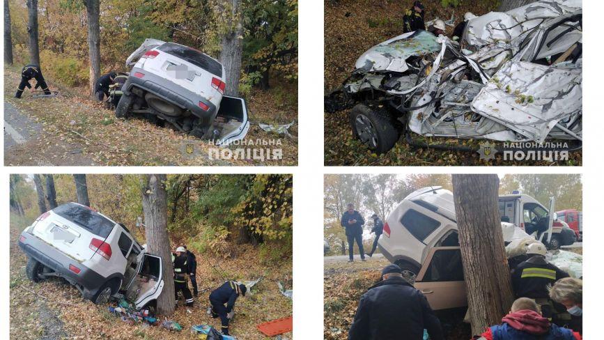 Смертельна ДТП під Гайсином: водій на Kia Mohave врізався у дерево