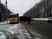 Біля Вінниці перекинулася вантажівка із дровами. ФОТО