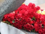 """""""Квітковий"""" бюджет: область витратила майже 86 тисяч гривень на тюльпани та гвоздики"""
