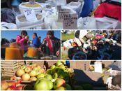 Продовжується сезон «червоних базарів». Встигніть скупитися до кінця жовтня