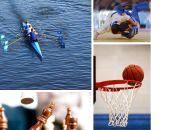 Анонси спортивного тижня: баскетбол, шахи, веслування, дзюдо