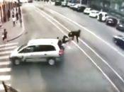 """ДТП на Соборній: водій """"Опеля» збив мотоцикліста. Відео та фото з місця"""