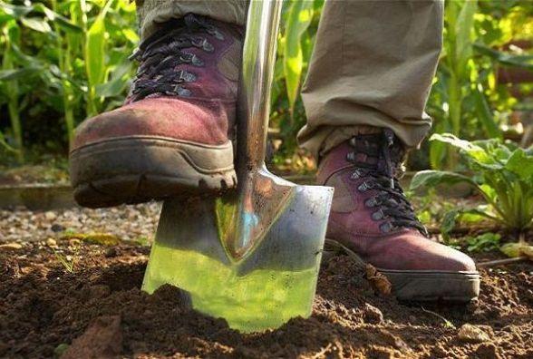 Учасник АТО «викопав» у себе на городі 23 патрони. Поліція у це не вірить