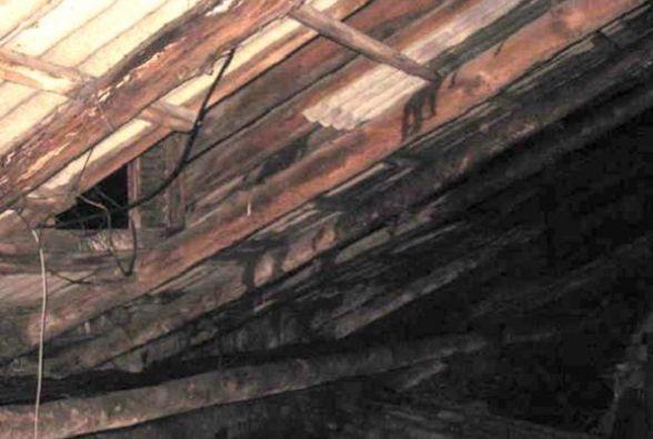 Діти знайшли рушницю на горищі хати, в якій ніхто не живе