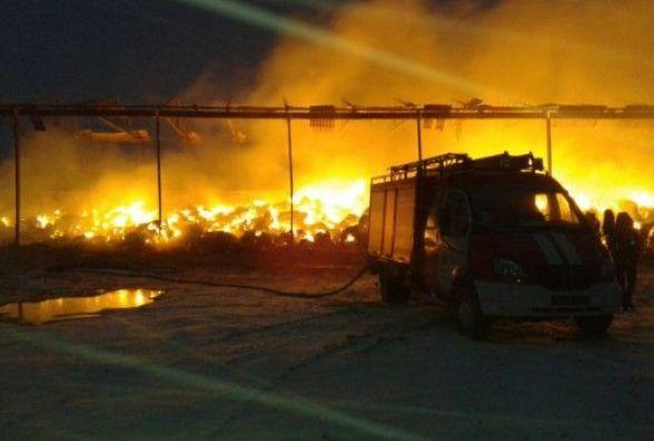 Пожежа на Вінниччині: за годину згорів зимовий запас сіна для худоби
