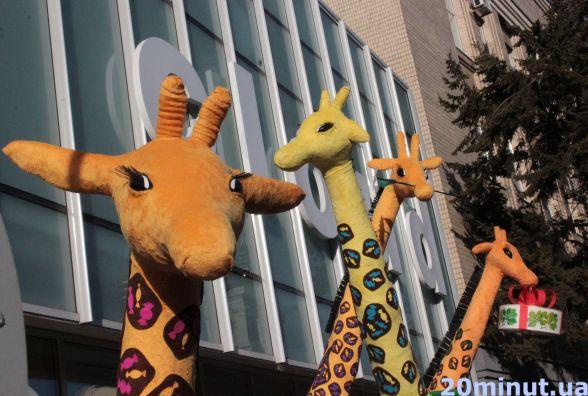 ФОТО ДНЯ. Замість сімейки пінгвінів - жирафи на вінтажних великах