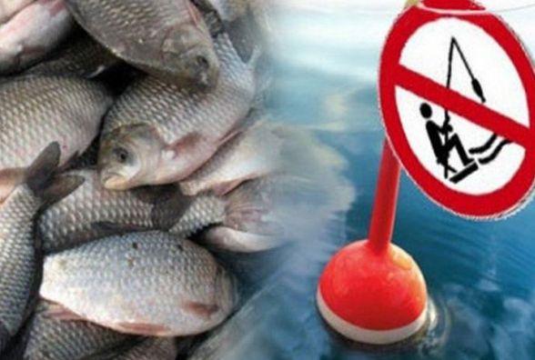 Де на Вінниччині до нересту не можна ловити риби. Перелік водойм