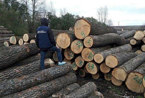 Лісника, що продав деревини на більше 200 тисяч гривень, хочуть посадити за грати