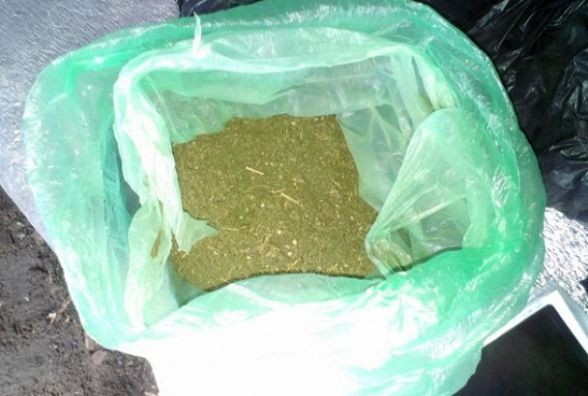 Житель Степанівки заготовив півкілограма марихуани. Усе для себе