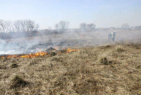 У Зарванці біля АЗС горіла суха трава. Ще понад півгектара горіло у Вінниці