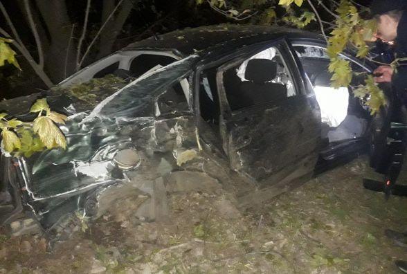Біля Вінниці п'яний водій на Рassat врізався в дерево. Є постраждалі  (ФОТО)