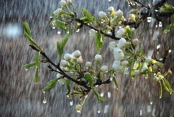 Погода на травневі свята: завтра Вінницю заллє дощами з грозами