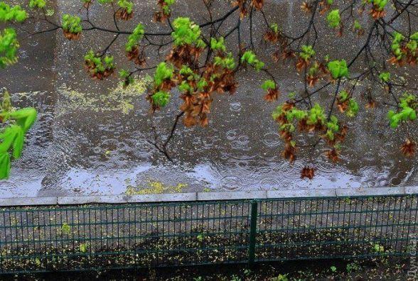В Україну суне арктичний циклон. Погода на наступний тиждень (8-14 травня)