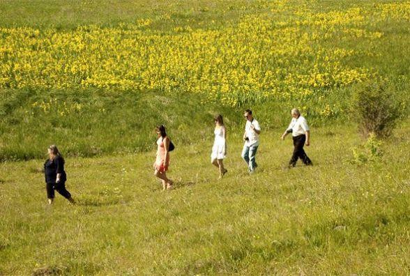Поспішайте побачити як зацвітає 13 гектарів Долини ірисів в Сніткові