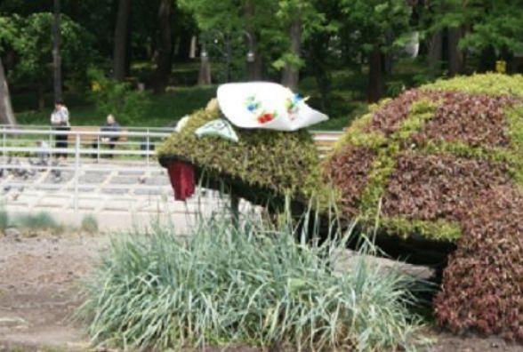 Вінницьку зелену черепашку одягли у капелюх. ФОТО