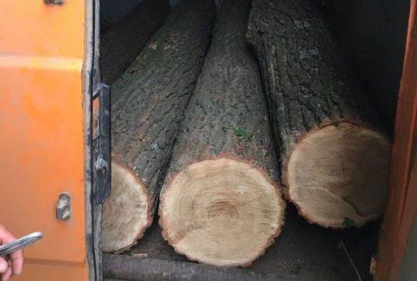 На Вінниччині двох чоловіків «спалили» коли ті крали ліс