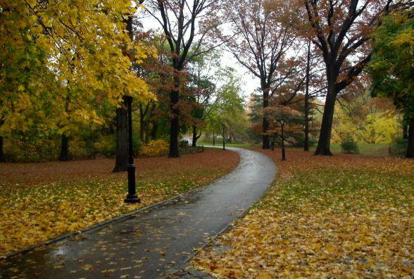 Синоптики розказали, якою буде погода в четвер, 5-го жовтня