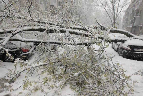 Циклон приніс в Україну снігопади. Синоптик розказала про погоду на вівторок