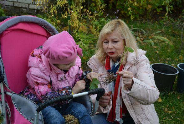 На території садочку, де навчаються діти-інваліди, юннати висадили плодово-ягідні дерева та кущі