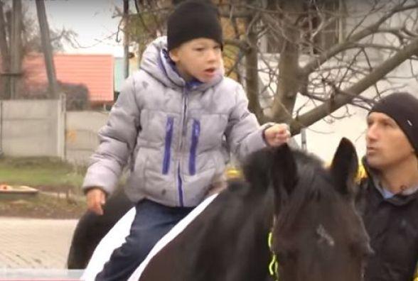 Вінничанин тримає коней. Тварини допомогають лікувати його сина  від ДЦП