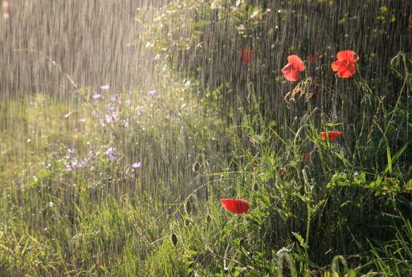 Погода на вихідні: в Україну йде похолодання з дощами та грозами