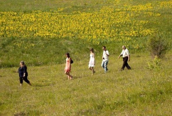 13 гектарів кохання: на Вінниччині зацвіла унікальна долина ірисів.