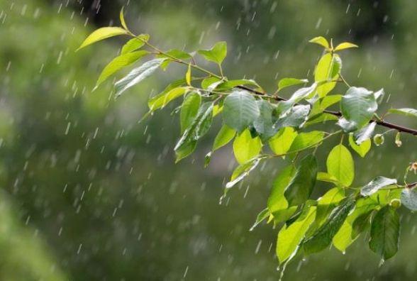Прогноз погоди в Вінниці сьогодні, 20 липня 2018 року