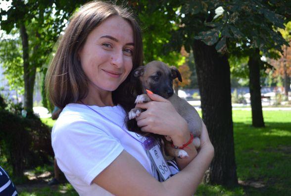 Пухнастий настрій на «Хвіст-фест»: біля вежі вп'яте шукали нових власників  для тварин