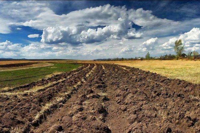 Вінницькі чиновники привласнили військові землі на десять мільйонів гривень