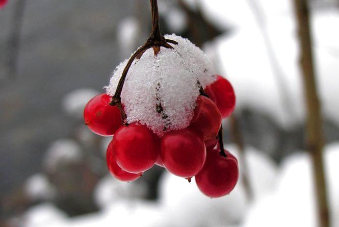 Погода у Вінниці на сьогодні, 1 січня