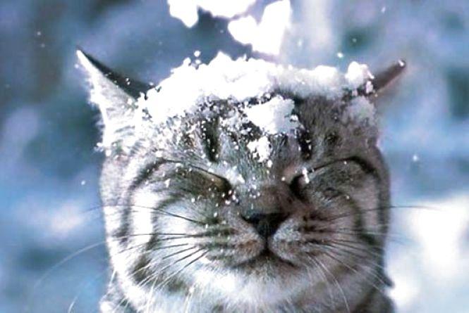 Погода у Вінниці на сьогодні, 9 січня