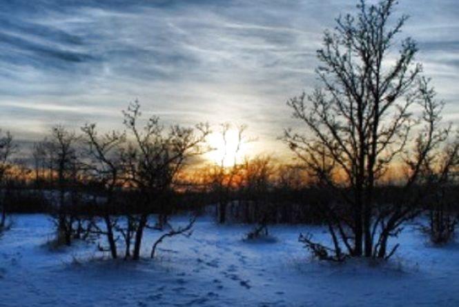 Погода у Вінниці на сьогодні, 30 січня
