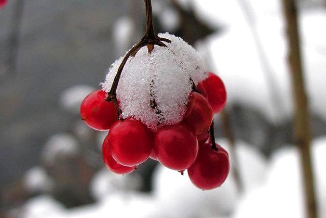 Погода у Вінниці на сьогодні, 15 лютого
