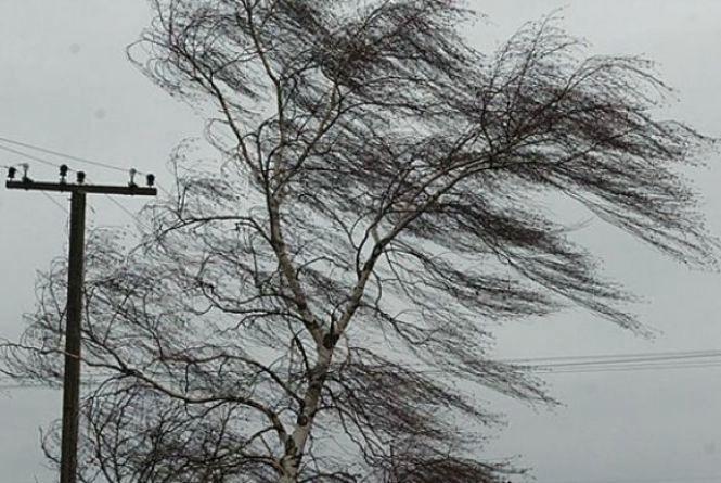 Сьогодні, 24 лютого, на Вінниччині очікується сильний вітер