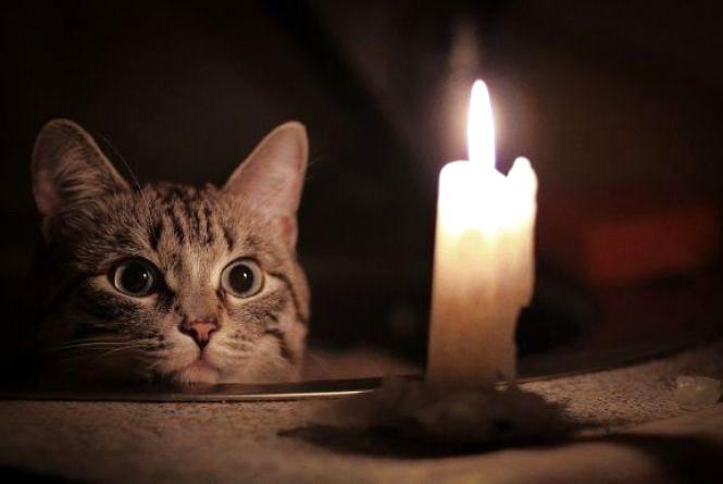 Де цього дня, 24 лютого, мешканці Вінниці сидітимуть без світла весь день