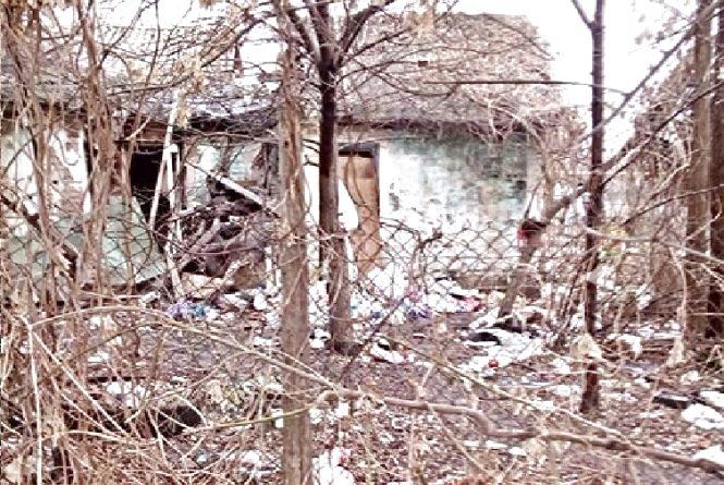 Звалище на Немирівському шосе не прибирають більше року