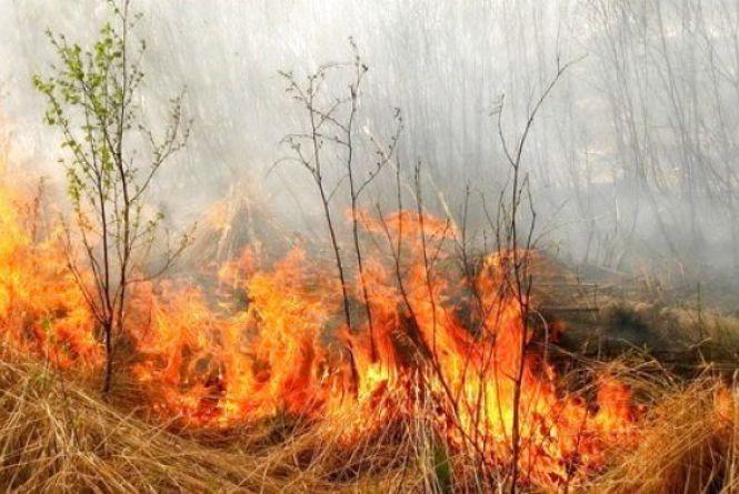 Вінниччина в смогу: вчора чотири пожежні машини гасили суху траву